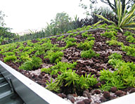 Green roofs often retain water and may cause difficulties in waterproofing over occupied spaces. Adding Hycrete integral waterproofing solutions provides additional protection against leaks.